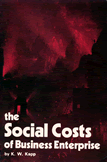 The Social Costs of Business Enterprise